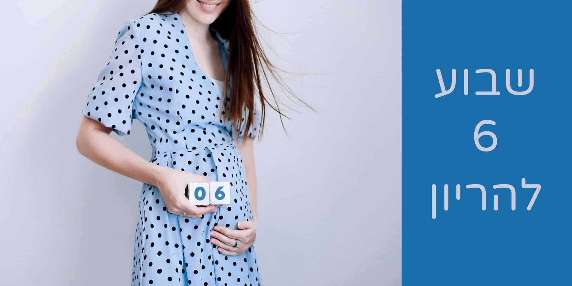 שבוע 6 להריון