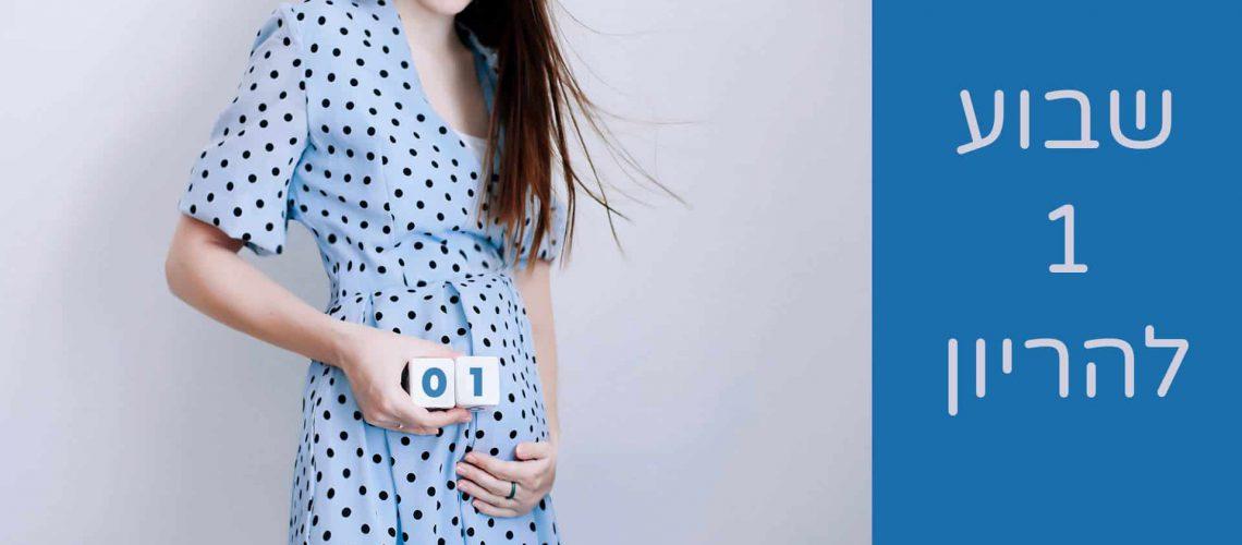 שבוע 1 להריון ראשי