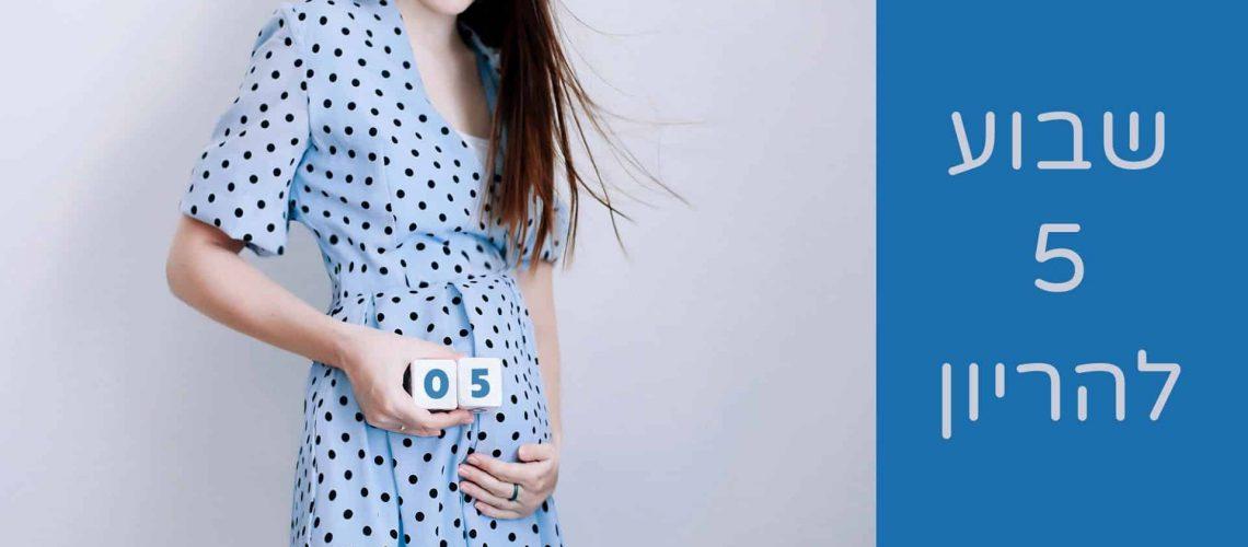 שבוע-5-להריון